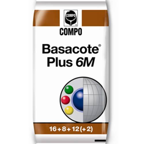 BasacotePlus6M